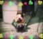 id:Akiranrun