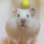 id:Asakuranbo
