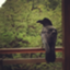 Asano_iris