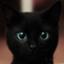 id:BlackCat67