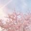 id:Cinderellatime