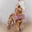 Erie_giraffe