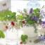 id:Flowerperfume64