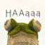 id:HAAaaa