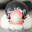 id:Hikari1019