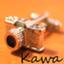 KAWA21