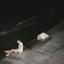 id:Midnightsun17