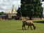 Myanmarshanlife