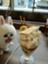 Nani_san