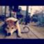 Otoboke_Kinoko