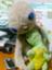 id:PASTORALE