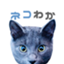 ProudexJapan
