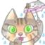 id:Rain10