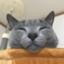 id:ScreenPocket
