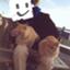 Shawshank_Andy3