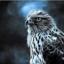 id:Siriusu-Jonny
