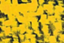 id:Yellow-F-Star