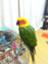 Yusuke_UPenn