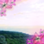 abun_dandhia