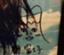 id:akky_12345_6