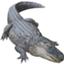 id:alligatorattack