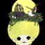 ameirororo