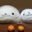 id:arashiazarashi