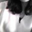 id:asakire