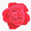 id:asami0331