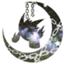 id:ashagipoke