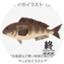 atka_mackerel_f