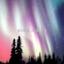 id:aurora_lummox