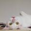 id:ayuayumu