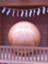id:babybunnystep