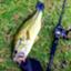 bassfishing845