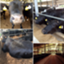 beefholic420