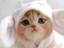 id:biglife722