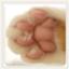 id:bikke_2013