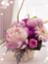 bloom1126