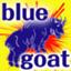 bluegoat511545