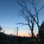 id:bluetoorange