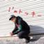 bounce_masa