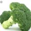 broccolijapan