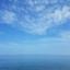 id:bukiyouna-kuma
