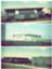 id:buta-no-maruyaki1995