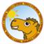 camel7777