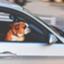 id:car-mrtake