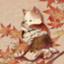cat-cat-48