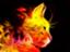catfire