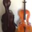 cellolife
